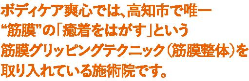 ボディケア爽心では、高知市で唯一筋膜の癒着をはがすという筋膜雨グリッピングを取り入れている施術院です。